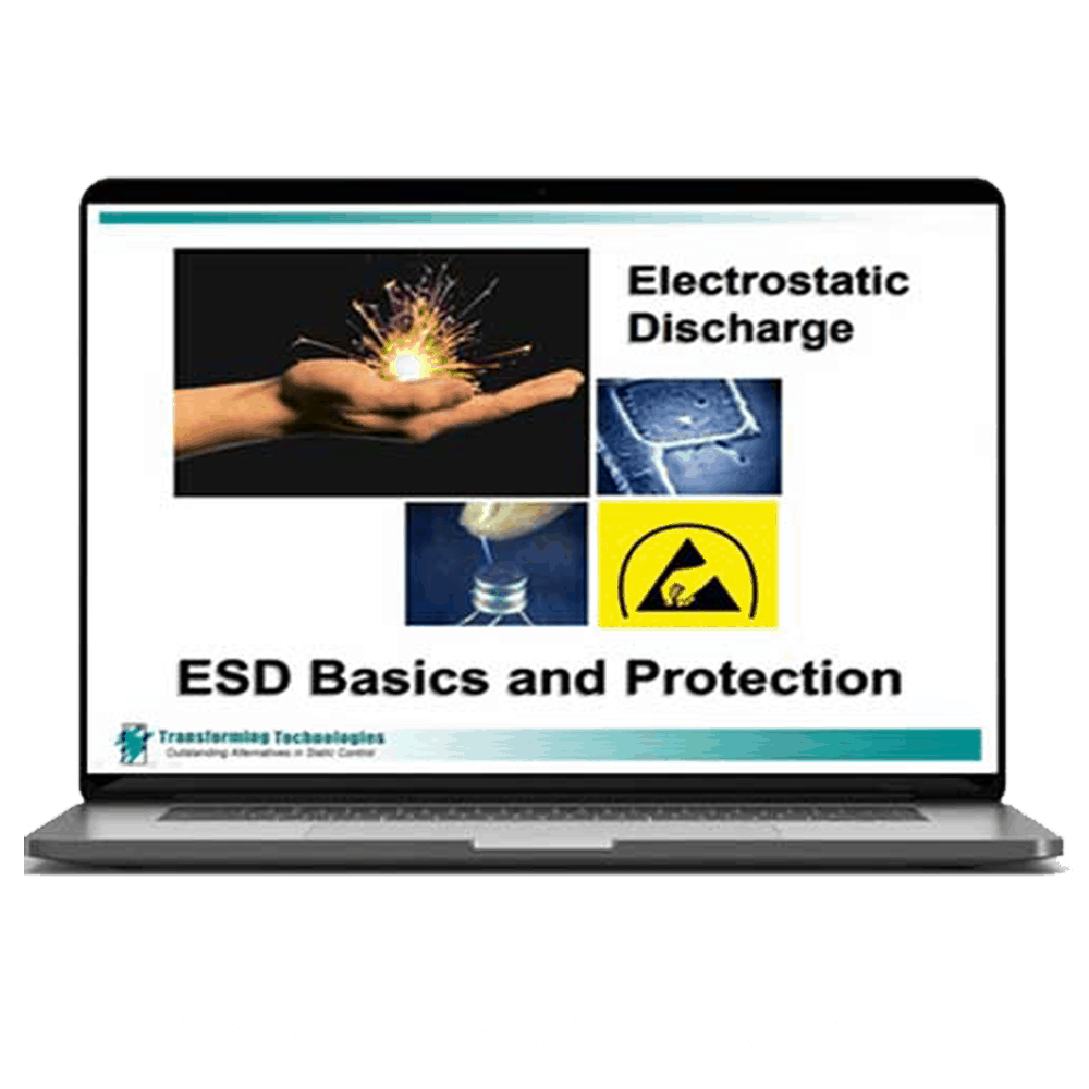 ESD Basics Powerpoint